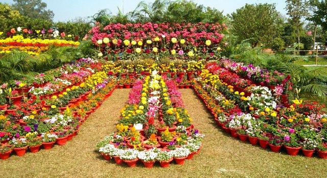 Botanic Garden in Ekamrakanan