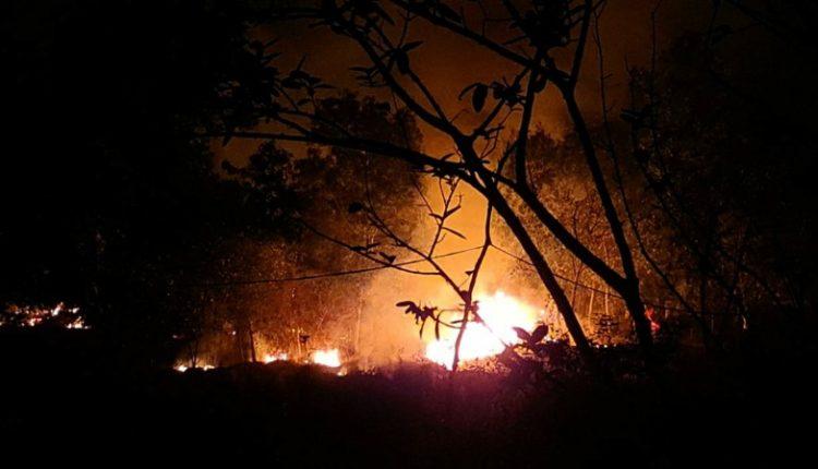 Forest Fire Mayurbhanj Similipal